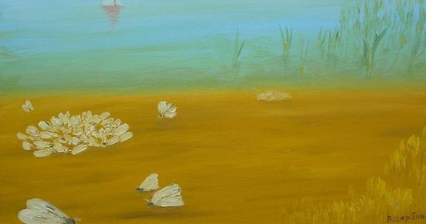 Butterflies, 2008  Оil on canvas, 28х49 cm